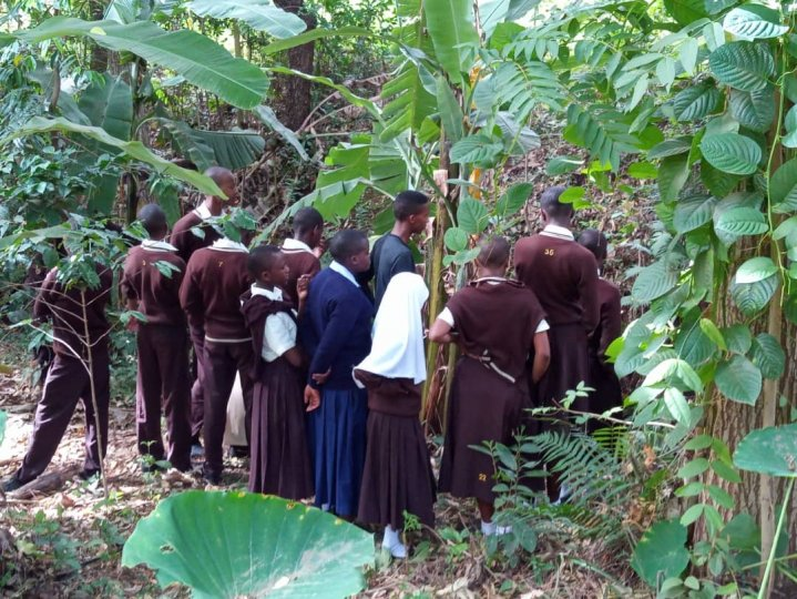 A group of students from Uroki Secondary School in Kilimanjaro observe water sources in a forest area.