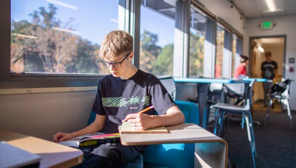 A student sits by a sunny window reading a book and taking notes.
